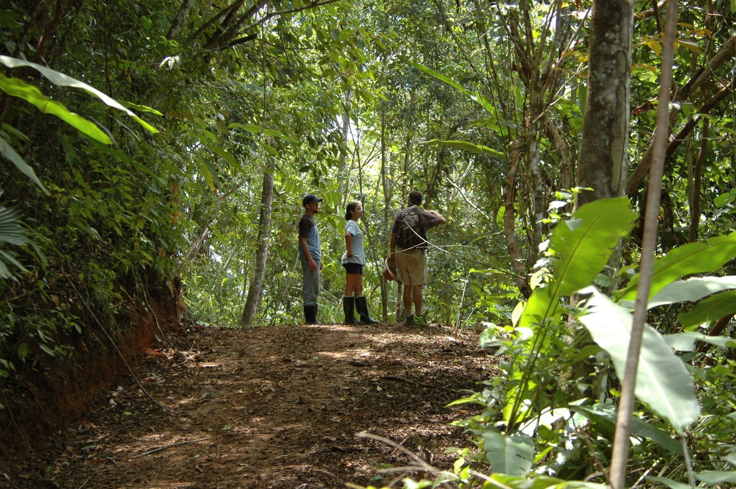 group hiking along the trails