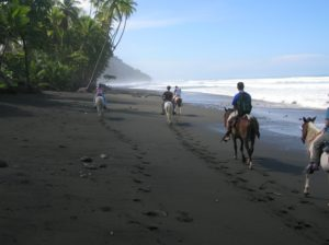 group riding horses on the beach